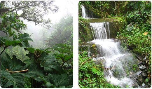 ecuador_national_parks