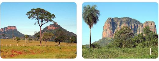 paraguay_oriental2